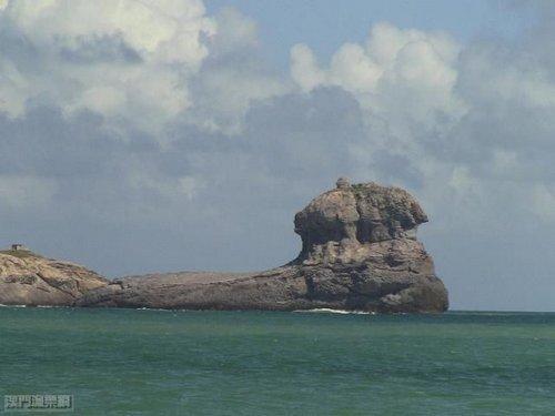 台山列岛 2011